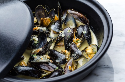 Amazing facts about mussels | Mussel