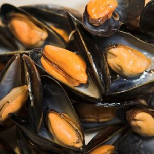 Succulent West Coast Mussels served in a sauce of your choice